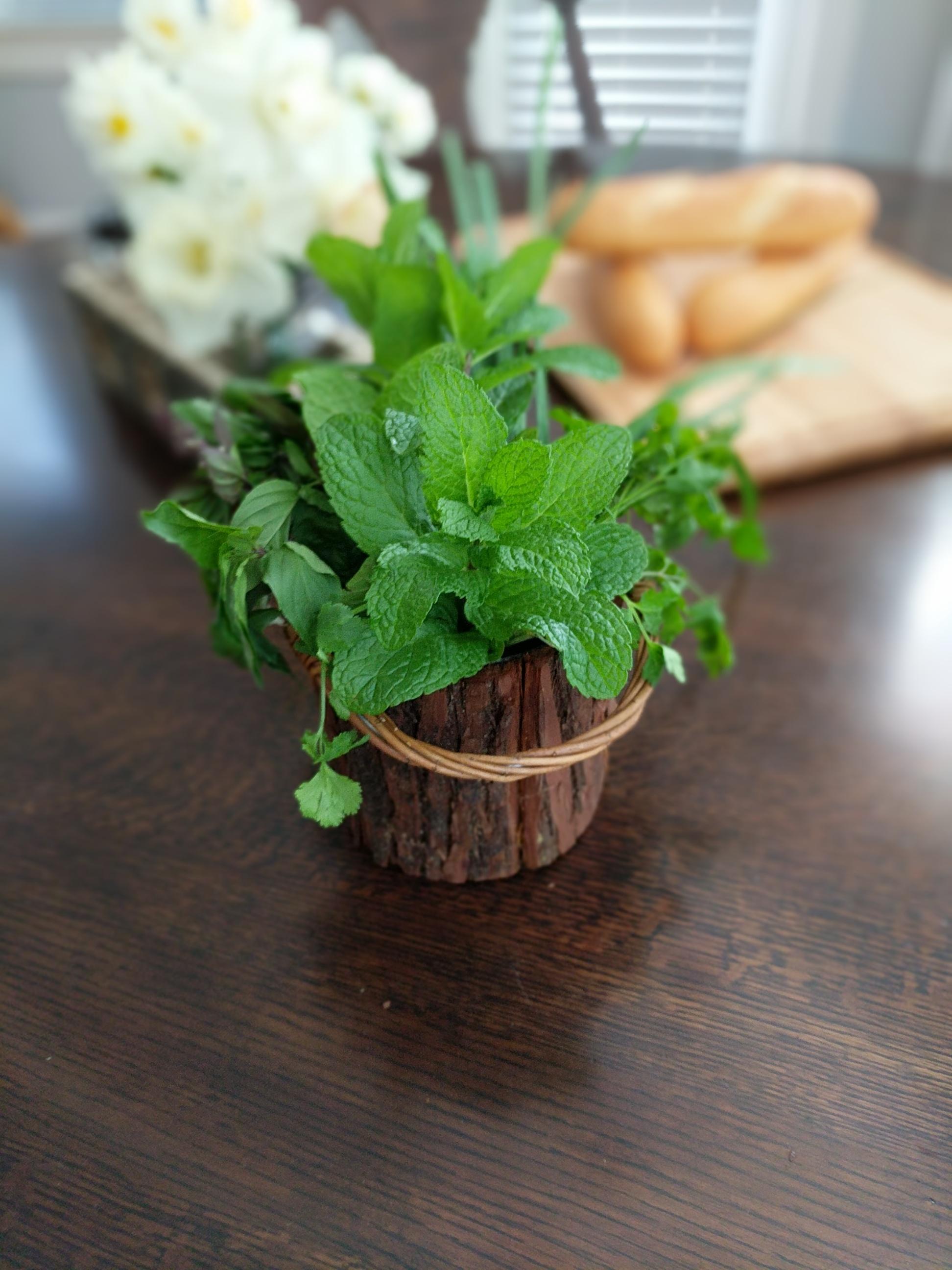 Bun Mi Herbs-002